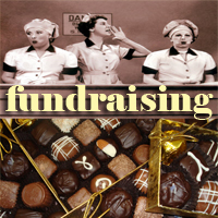 Fundraising for Salt Spring Island